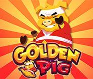 Golden Pig